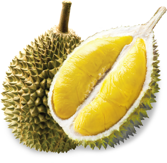 PNG Durian - 135722