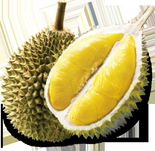 DURIAN TRIP. u201c - PNG Durian