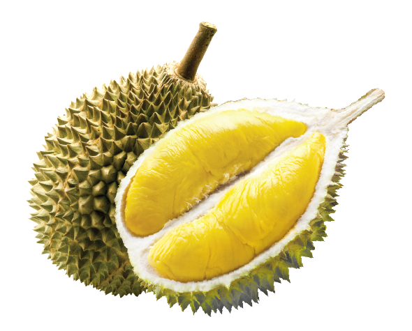 PNG Durian - 135715