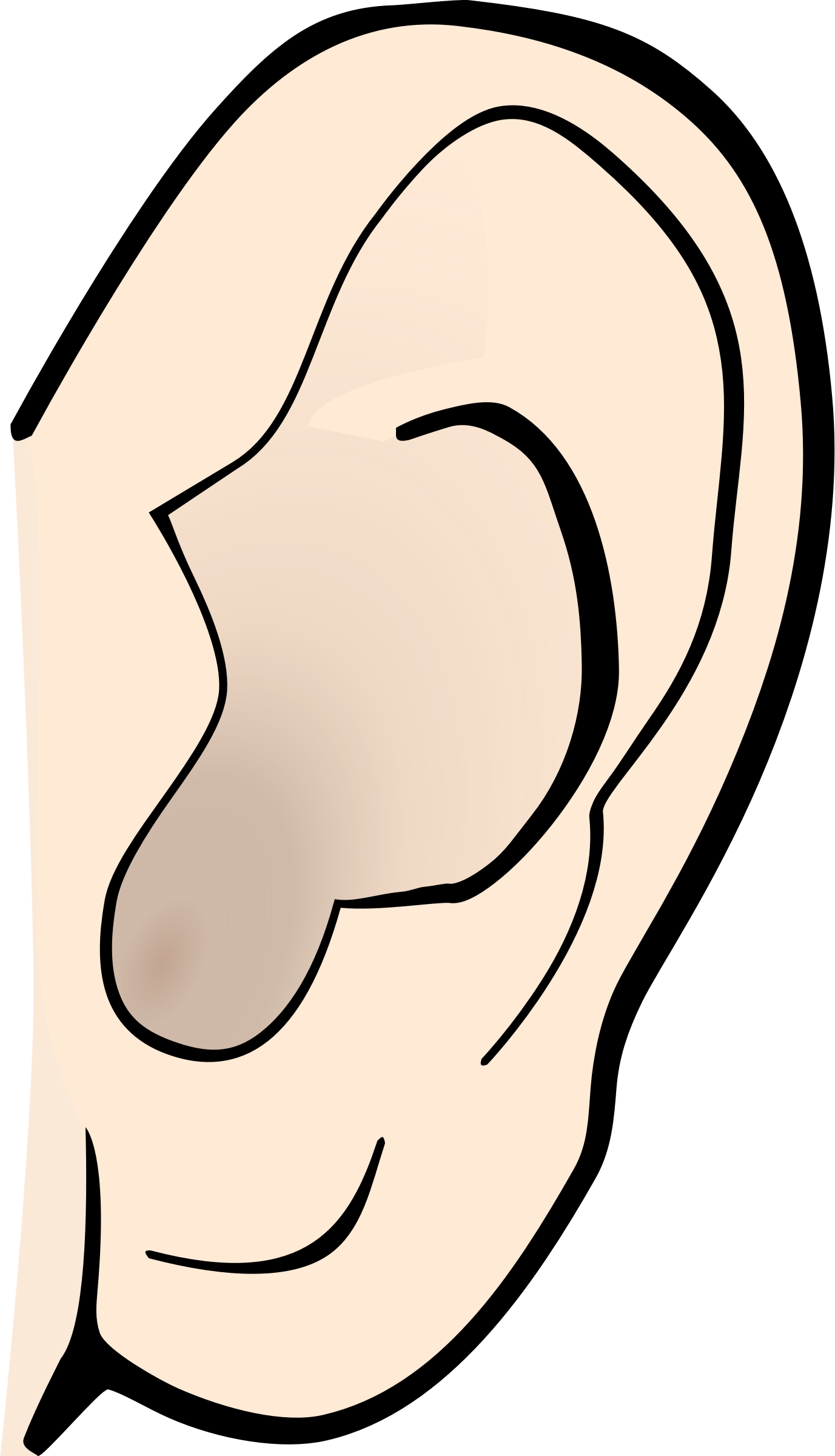 Png ear clipart - PNG Ears Listening