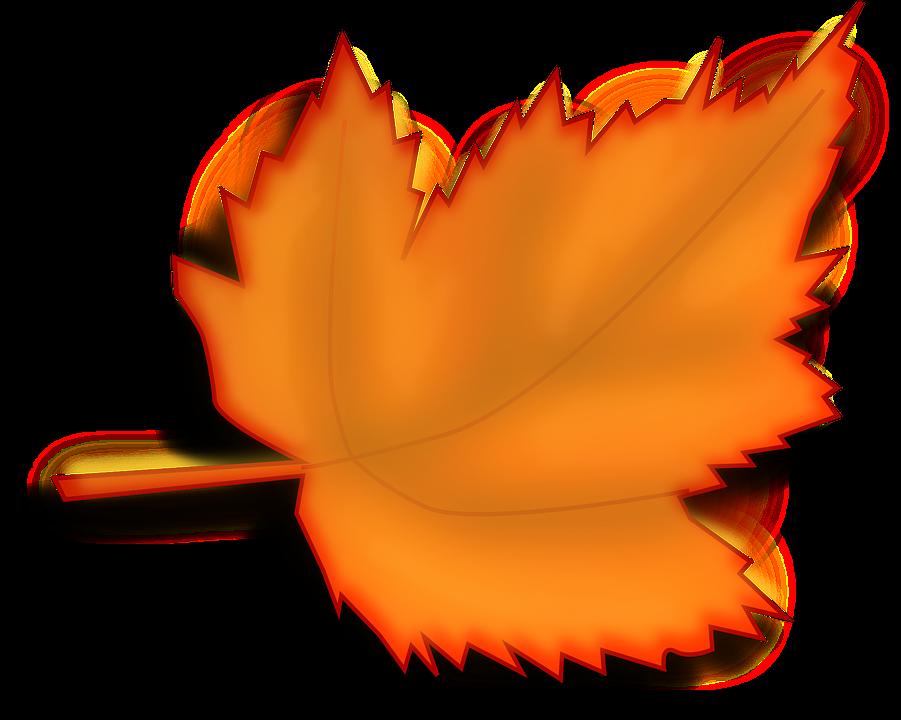 Ahorn, Efterår, Falde, Blad, Appelsin, Nuancer - PNG Efterar