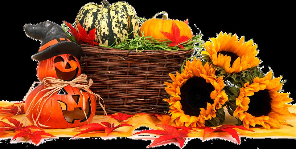 Freigestellt, Herbst, Lebensmittel, Erntedank - PNG Erntedank Kostenlos