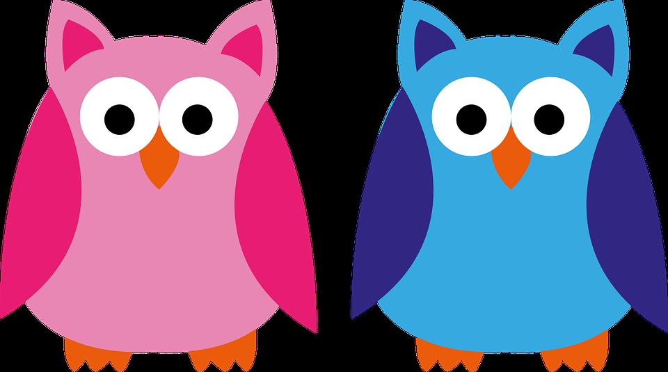 eule blau rosa pink junge mädchen applikation - PNG Eule Blau