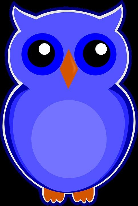 eule blau vogel niedlich tier natur süß - PNG Eule Blau