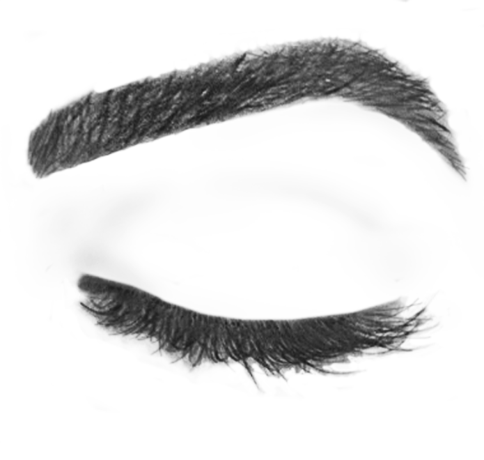 PNG Eyebrows-PlusPNG.com-695 - PNG Eyebrows