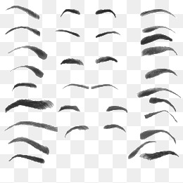 PNG Eyebrows - 62399