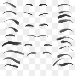 Eyebrow, Eyebrow, Eyebrow, Female PNG Image - PNG Eyebrows