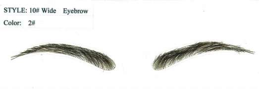 . PlusPng.com Eyebrows Png · Human Hair Eyebrow Wig Eyebrows PlusPng.com  - PNG Eyebrows