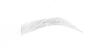 LIGHT BROWN PENCIL for MICROBLADING EYEBROWS - PNG Eyebrows