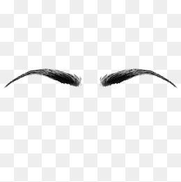 Symmetrical female eyebrows material, Symmetry, Female, Eyebrow PNG and  Vector - PNG Eyebrows