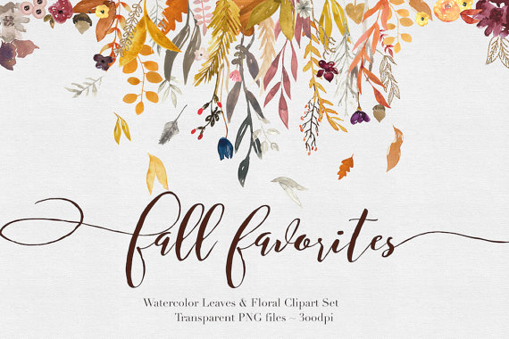 Fall Flowers Watercolor Clipart Files - High Res Transparent PNG - Hand  Painted Digital Scrapbook elements - Instant download - PNG Fall Flowers