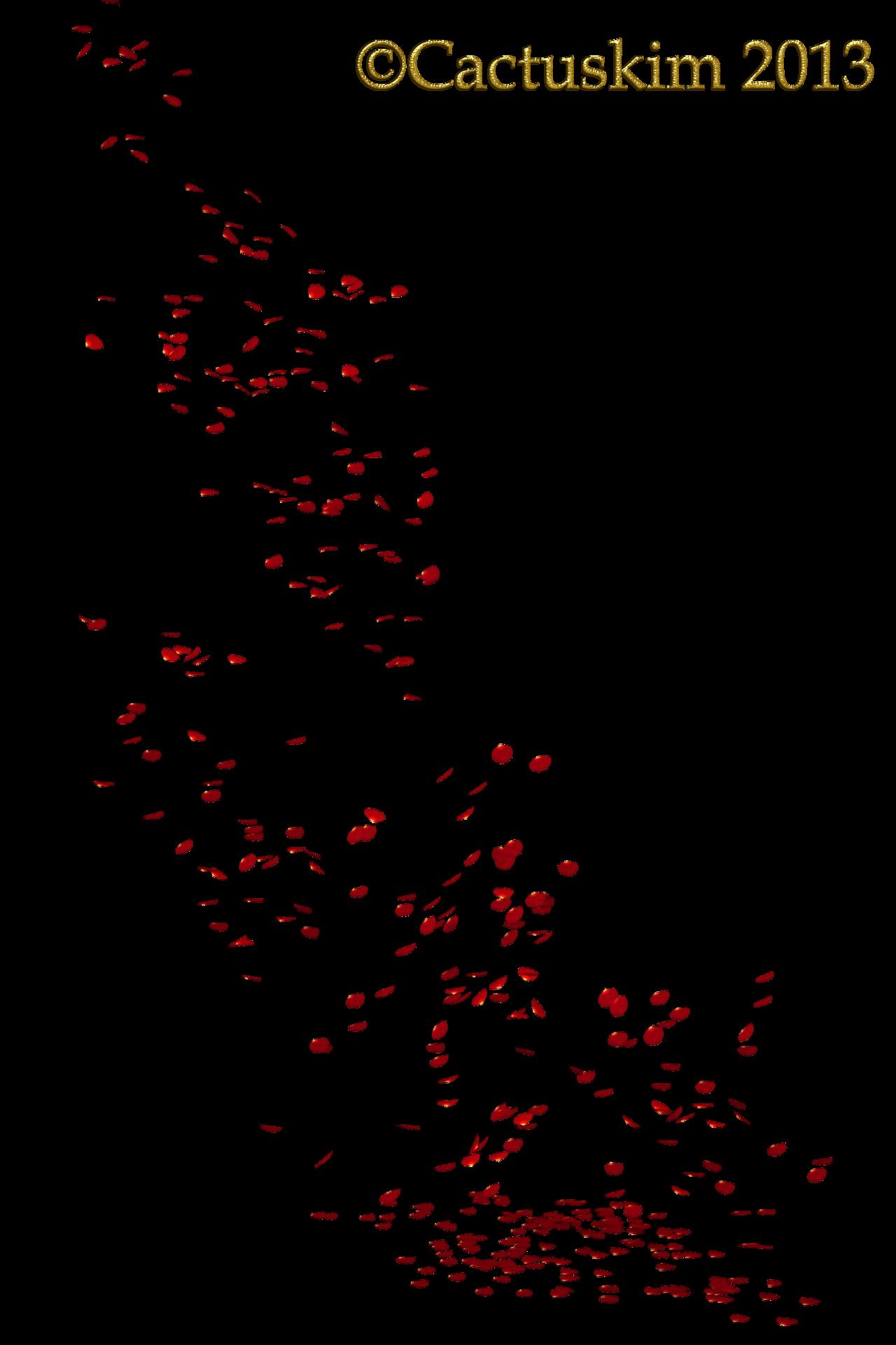 Falling Petals KL by cactuski