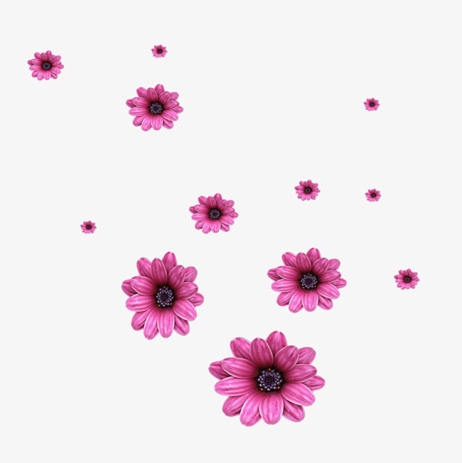 Scattered flowers, Flowers, Falling Flowers, Purple Flowers PNG and PSD - PNG Fall Flowers