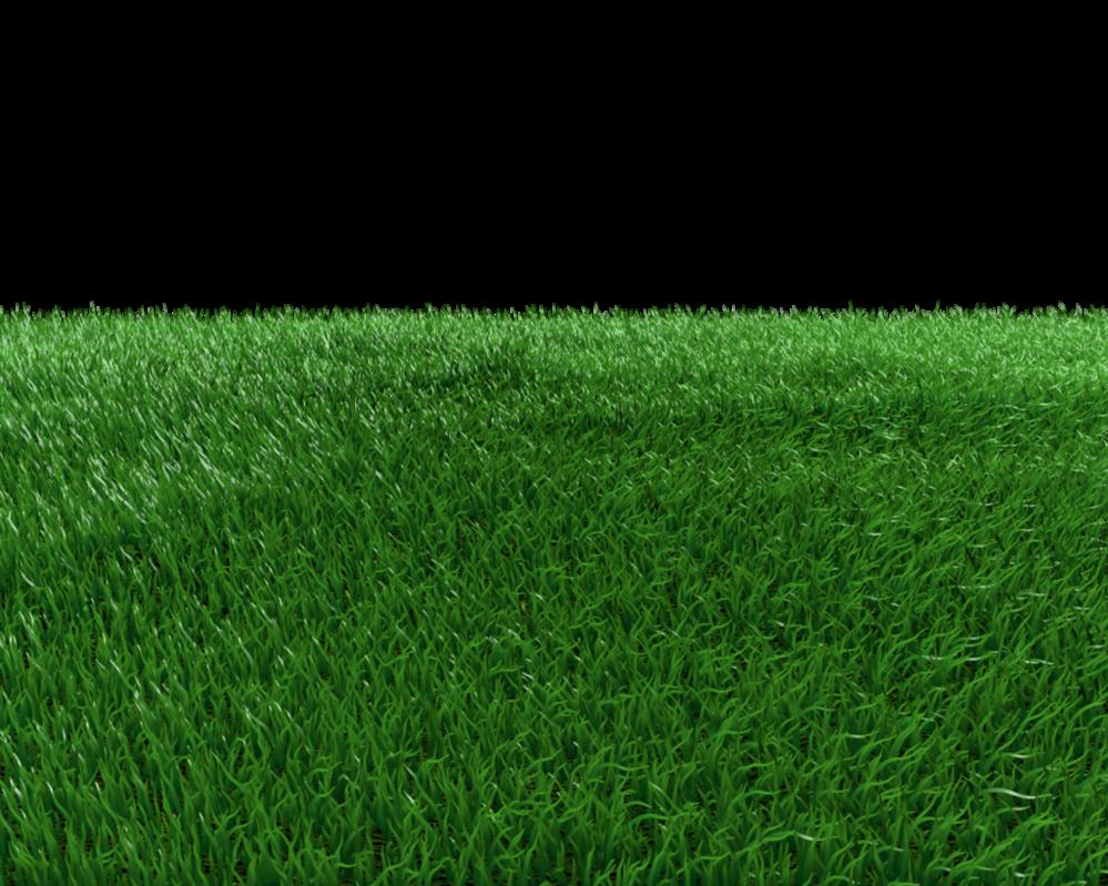 Grass Field Png by dabbex30 PlusPng.com  - PNG Field