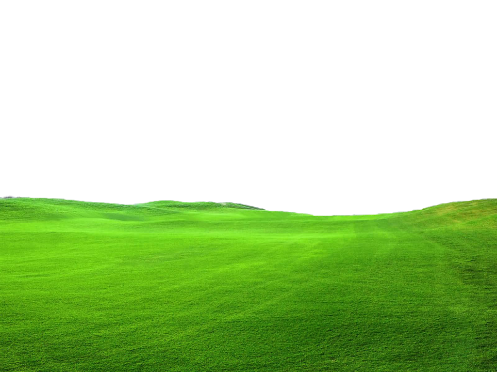 Green Grass PNG FILE - Use freely by TheArtist100 PlusPng.com  - PNG Field