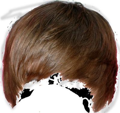 PNG File Name: Hair PlusPng.com  - Hair PNG