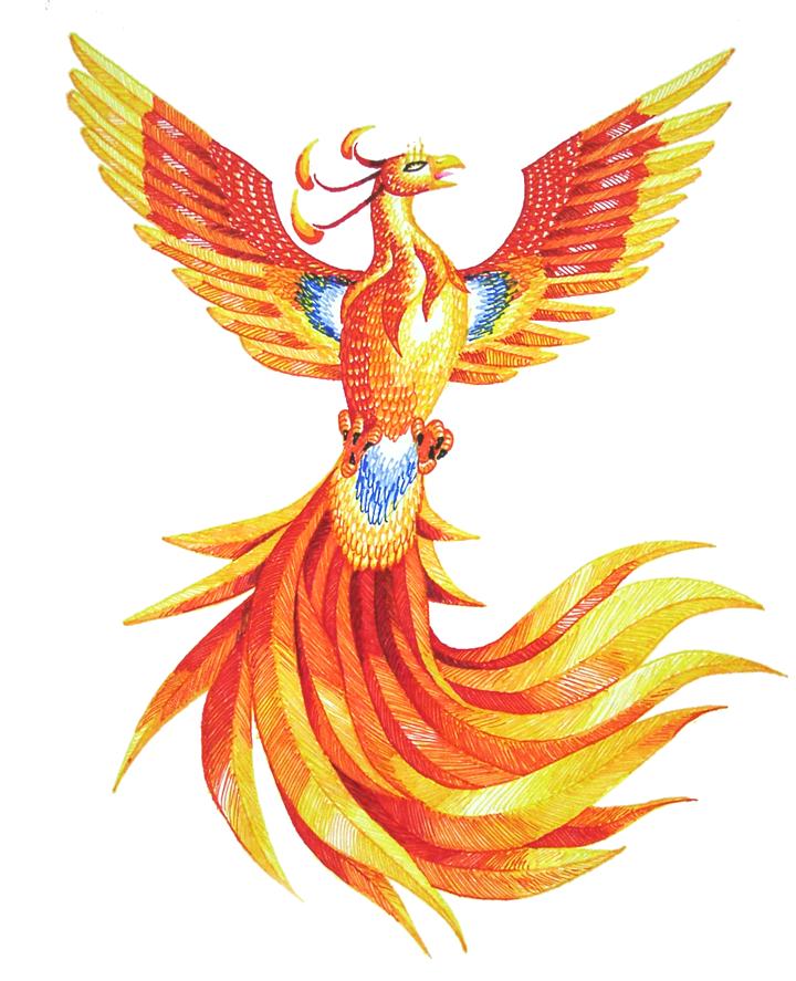 Phoenix PNG - 6936