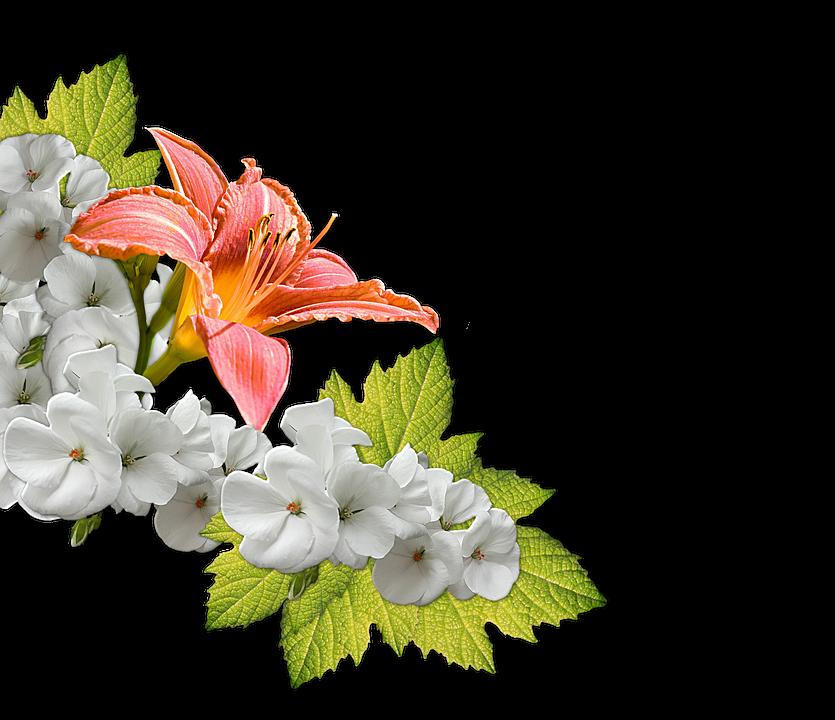 fiori bouquet decorazione composizione - PNG Fiori Gratis