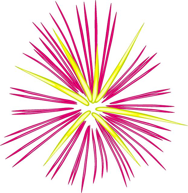 Imagem vetorial gratis: Celebração, Fogos De Artifício - Imagem gratis no  Pixabay - 152951 - PNG Fogos De Artificio