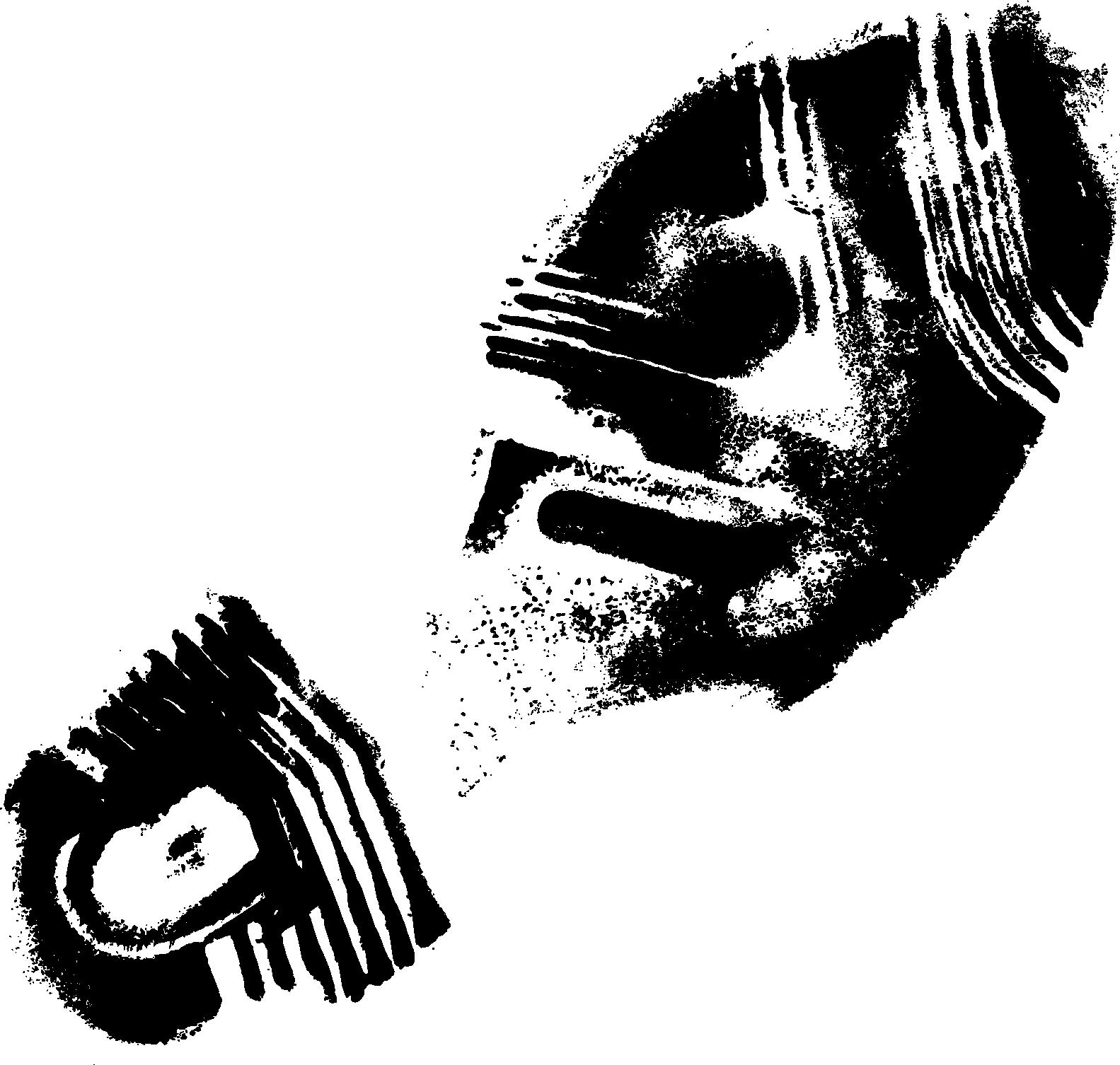 PNG Footprint - 154335