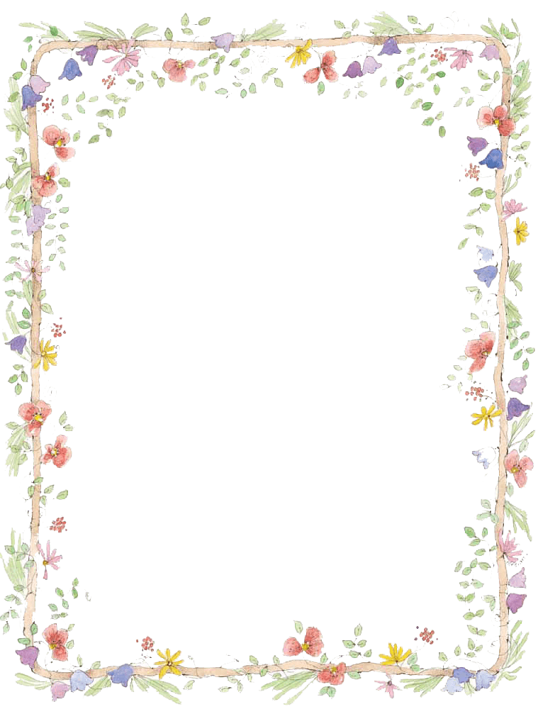 Flowers Frame Colours - PNG Frames For Pictures