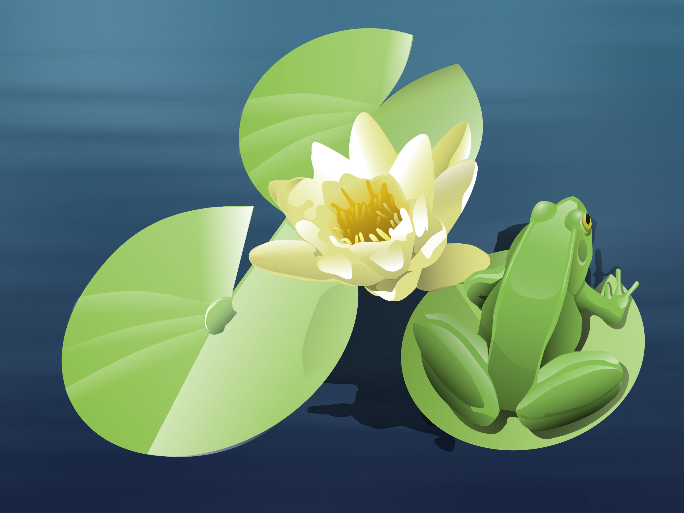 This free Icons Png design of frog on a lily pad (animated) PlusPng.com  - PNG Frog On Lily Pad