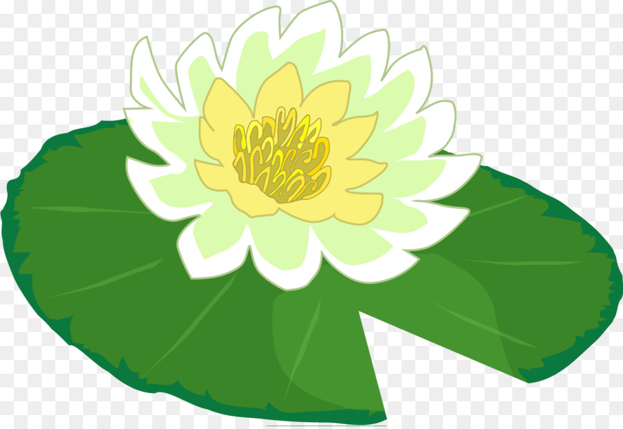 Water lily Frog Clip art - Lily Pad - PNG Frog On Lily Pad