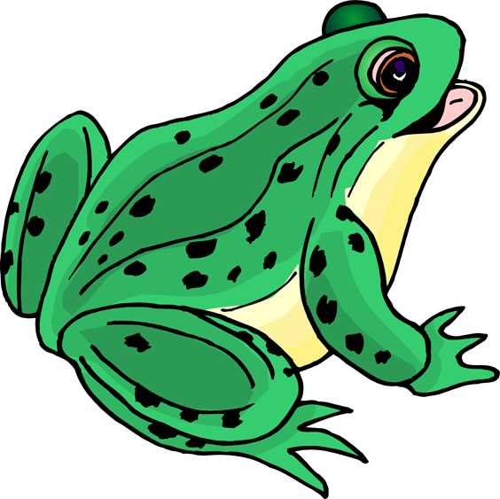 Frog clip art for teachers free clipart images 2 - PNG Frogs Free