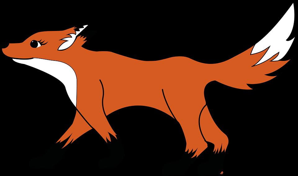Fuchs, Geht, Gehend, Jäger, Waldtier, Wald, Wild, Scheu - PNG Fuchs Kostenlos