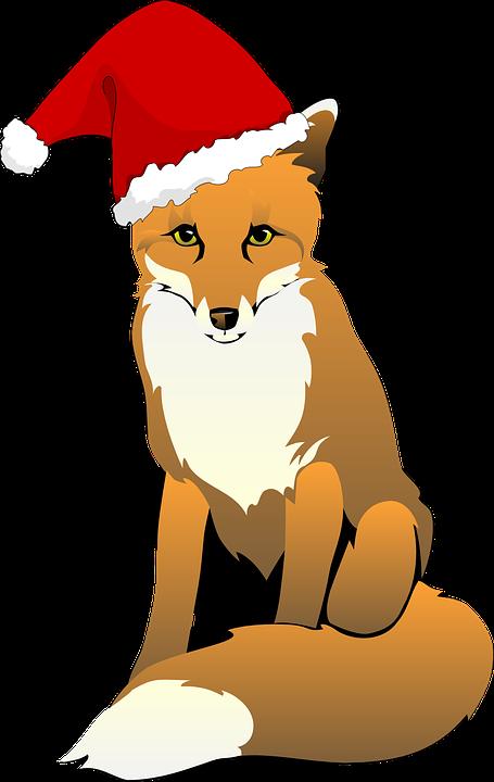 Fuchs, Mütze, Weihnachten, Dezember, Tier - PNG Fuchs Kostenlos