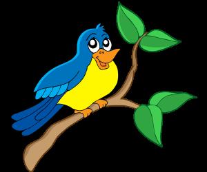 En lille fugl på en gren - PNG Fugle