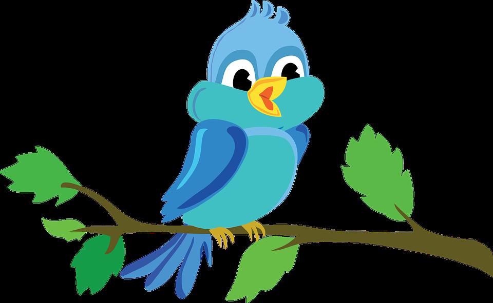 Fugl, Gren, Sød, Vektor, Blå - PNG Fugle