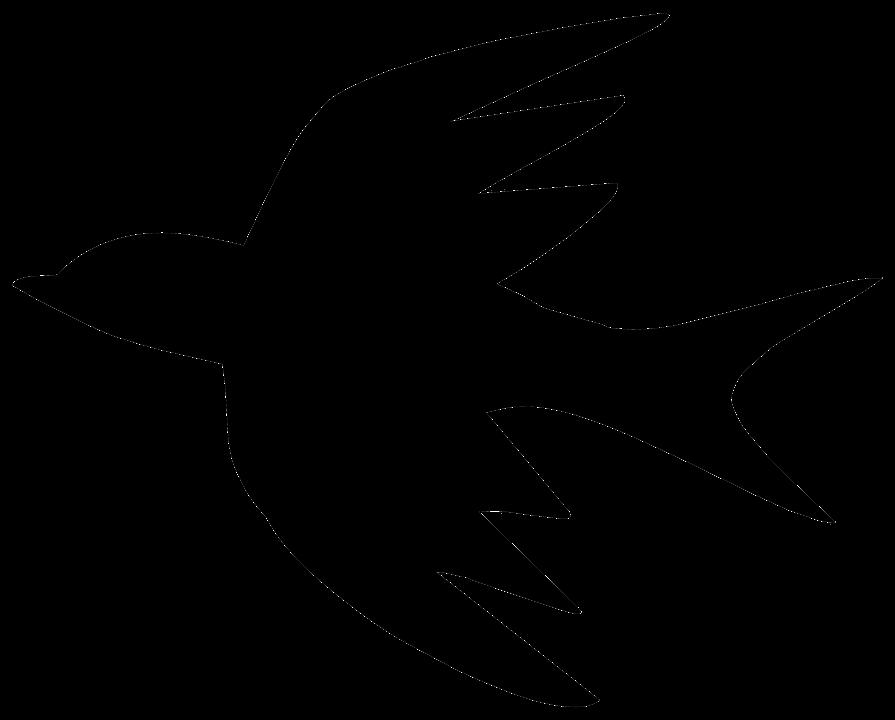 PNG Fugle - 66232