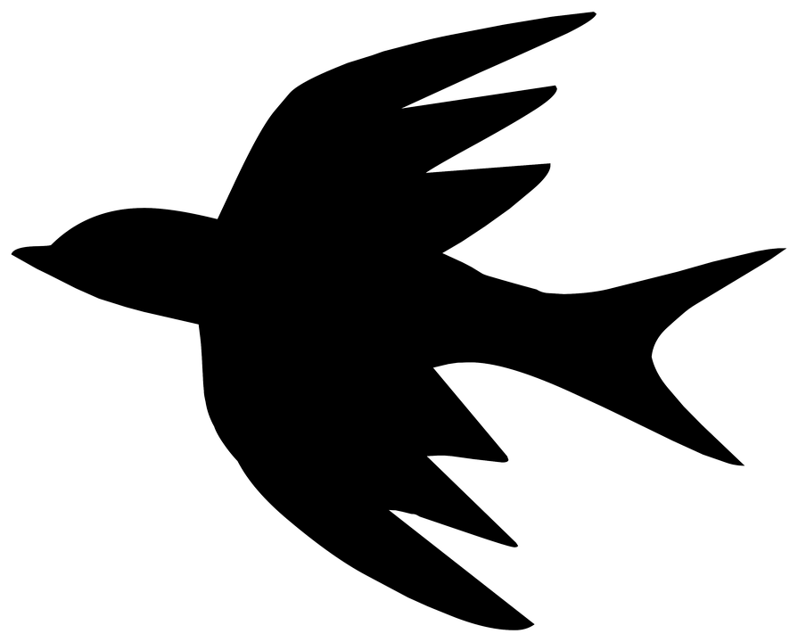Silhuet, Tegning, Skitse, Fugl, Spa, Natur, Logo - PNG Fugle