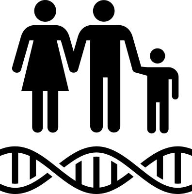 PNG Genetics-PlusPNG.com-140