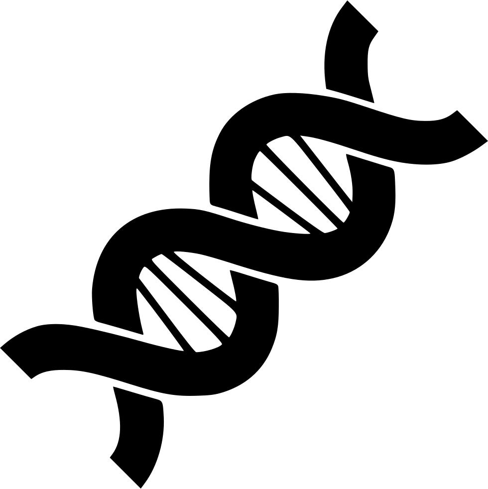 PNG Genetics - 67101