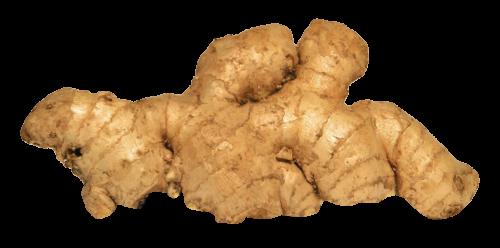 Download Ginger PNG Image - PNG Ginger