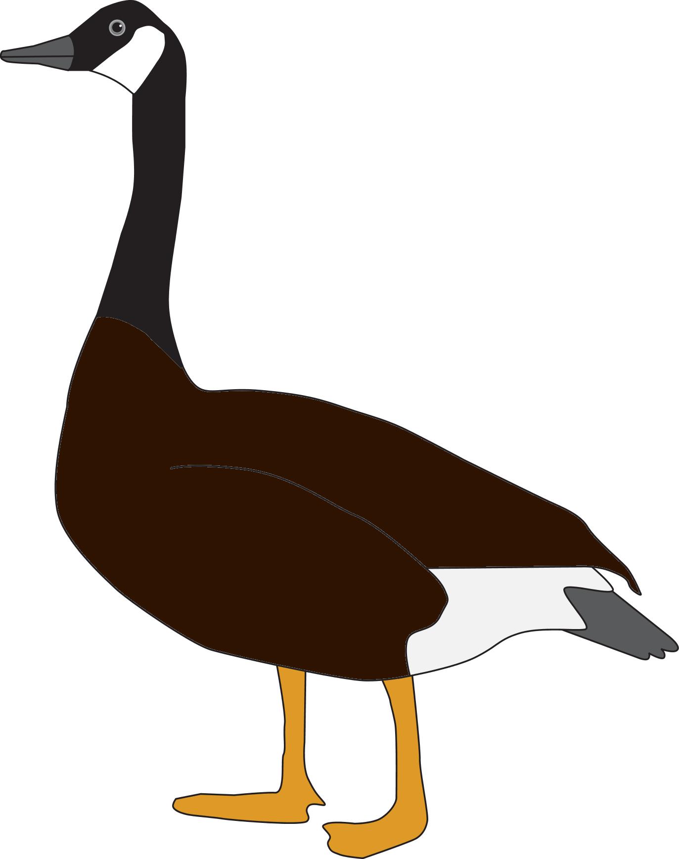 Goose.png - PNG Goose
