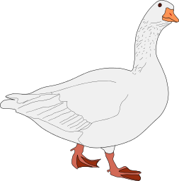 Goose Png Clipart image #33515 - PNG Goose