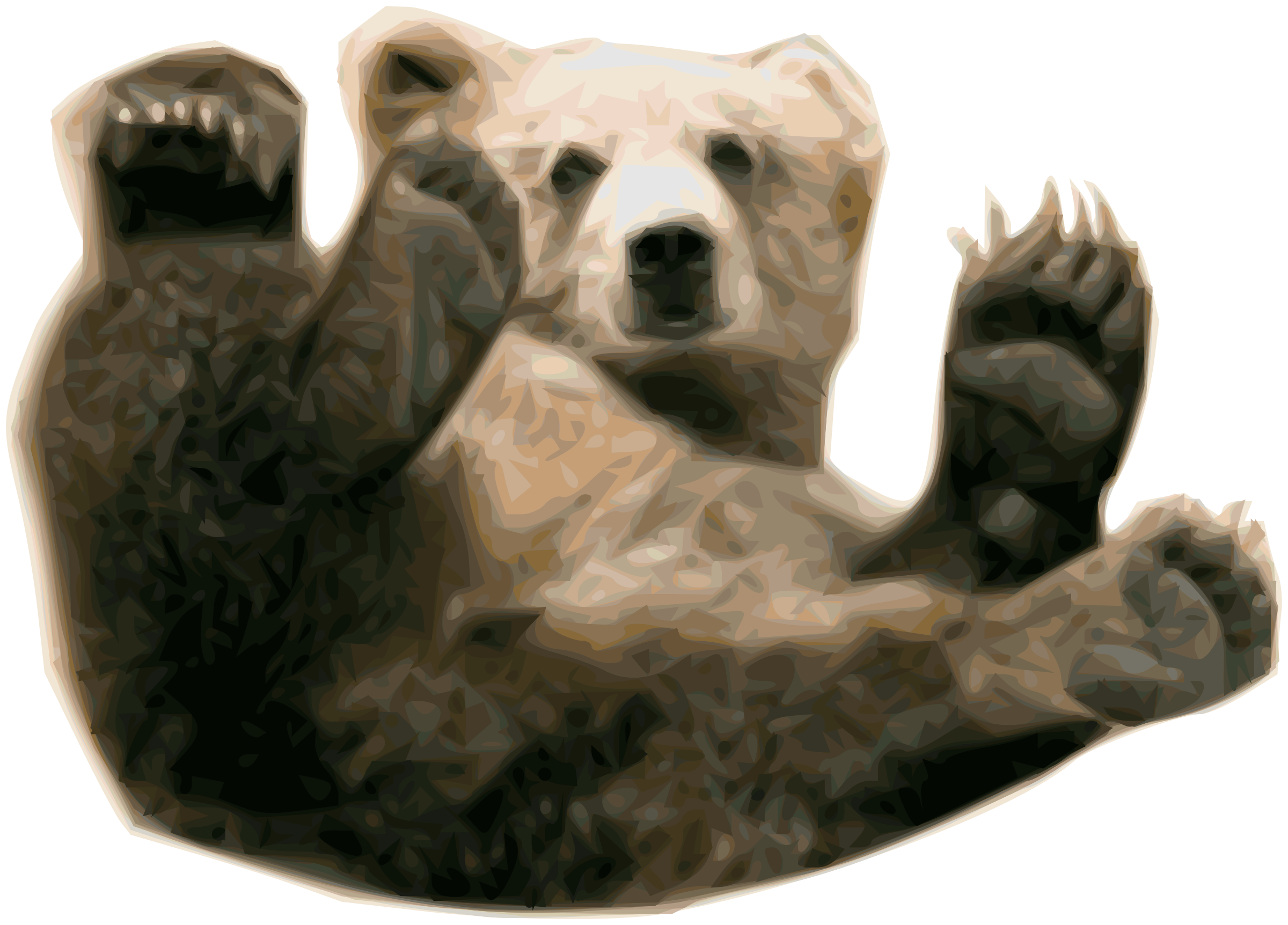 PNG Grizzly Bear - 50911