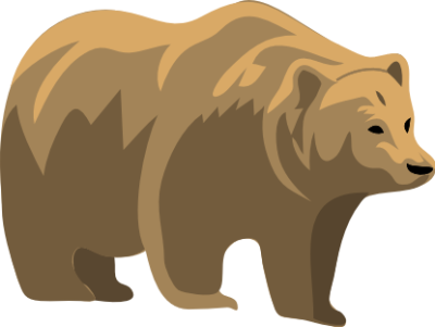 PNG Grizzly Bear - 50921