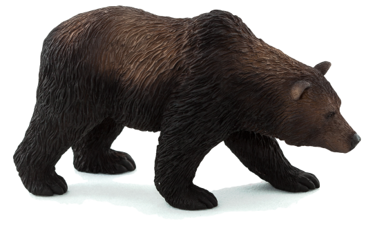 PNG Grizzly Bear - 50910