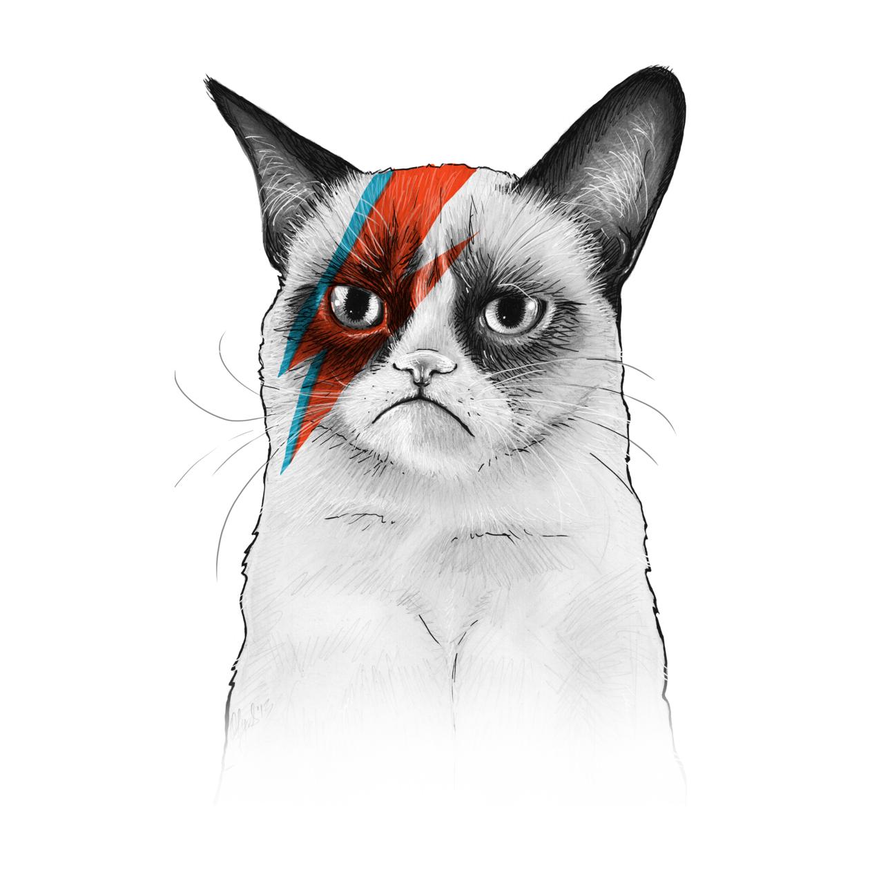 PNG Grumpy Cat - 65998