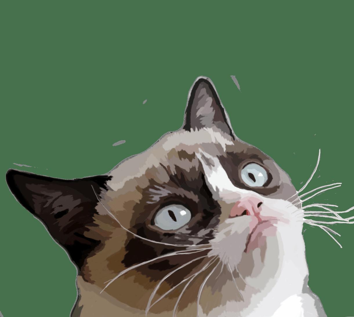 PNG Grumpy Cat - 65986