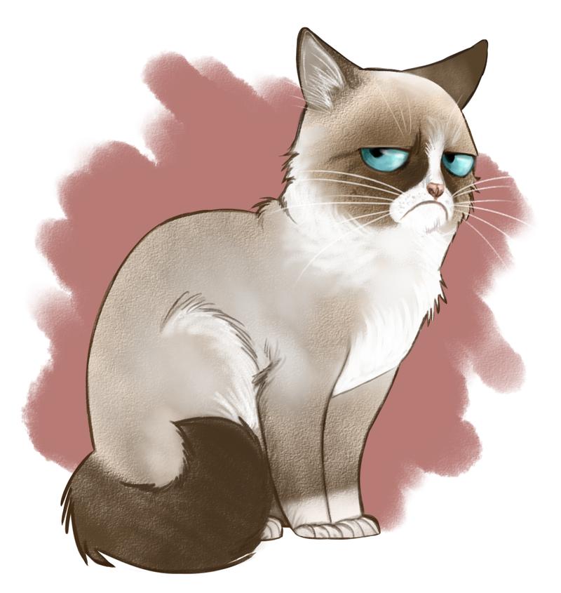 PNG Grumpy Cat - 65990
