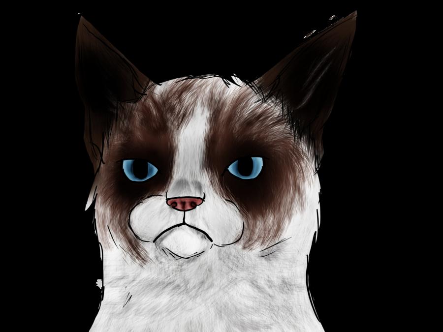 PNG Grumpy Cat - 65997