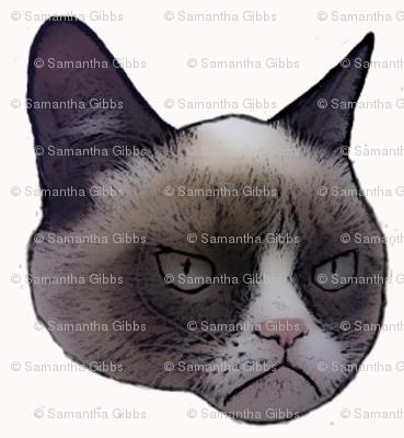 PNG Grumpy Cat - 65992