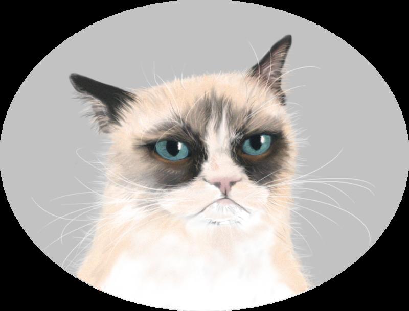 PNG Grumpy Cat - 65993