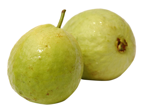 Download Guava PNG Image - PNG Guava