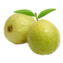 Download PNG image - Guava Png Hd - PNG Guava